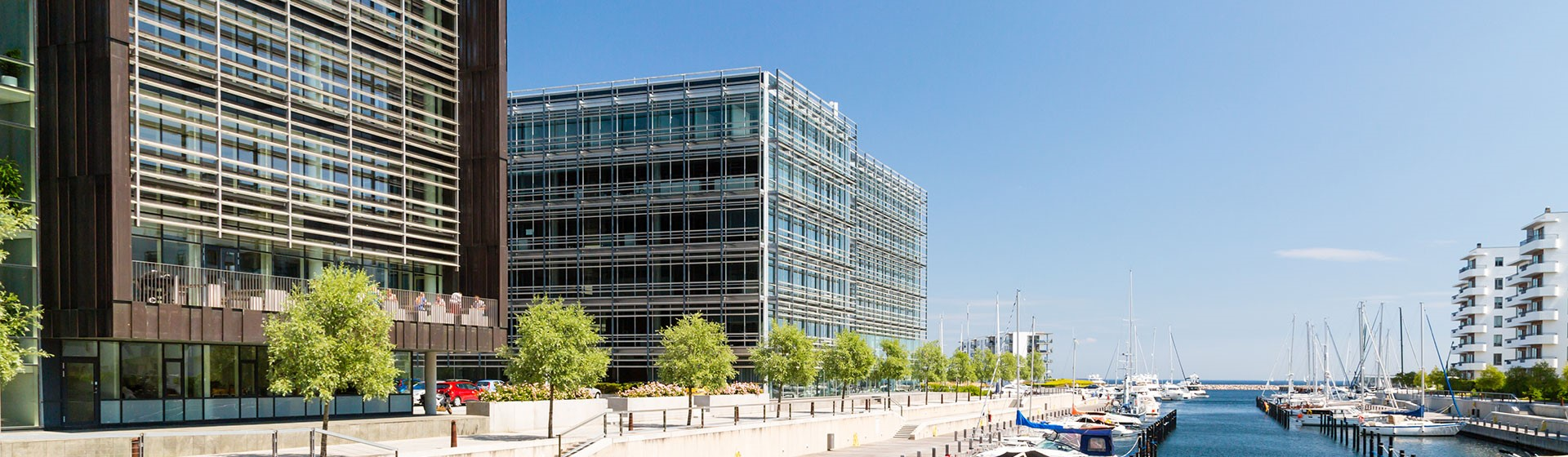 img description
